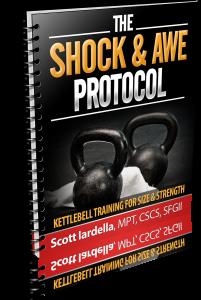 The_Shock___Awe_Protocol_02