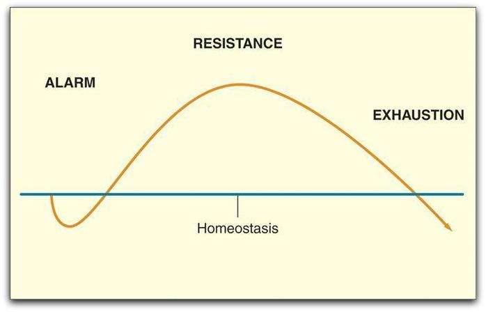 gas-principle